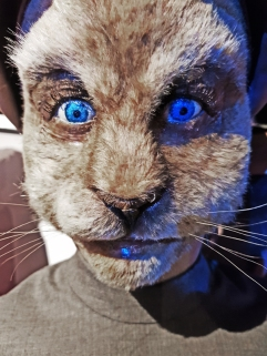 Doctor Who Experience - Blue cat future